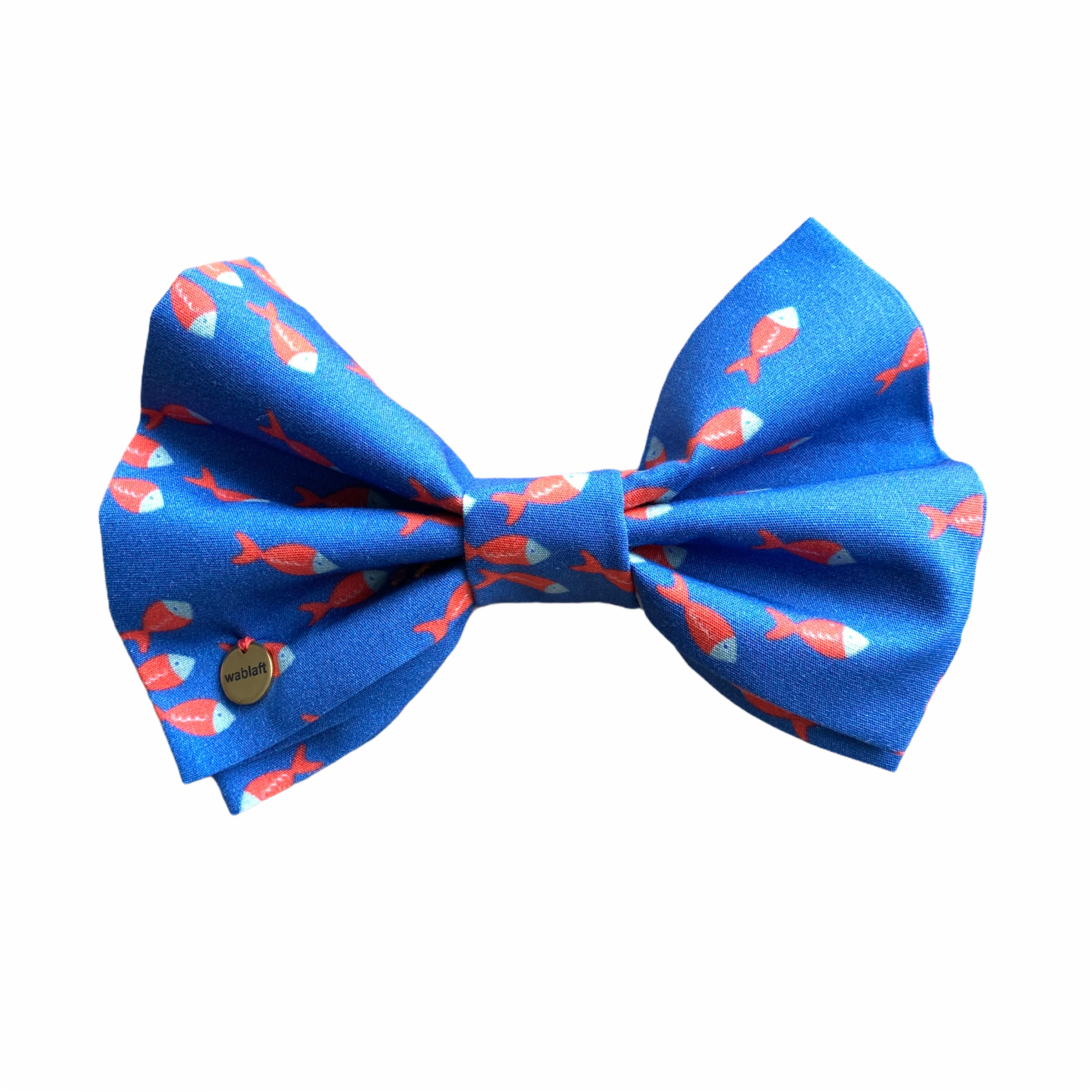 bow tie fishes